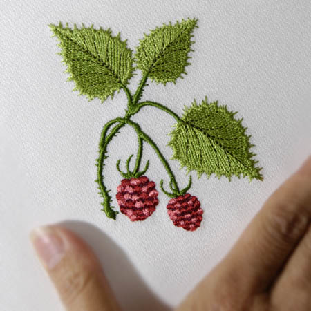 Wild Raspberries Accent