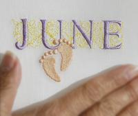 Due Date Month ( June)