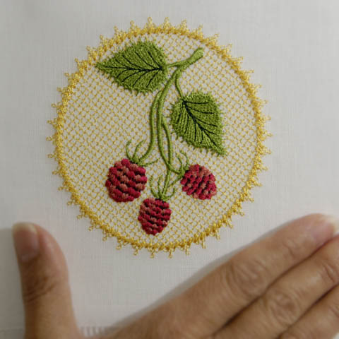 Wild Raspberries Accent 2
