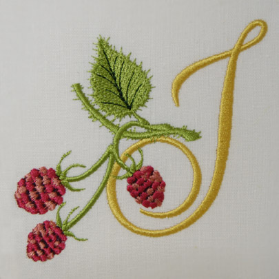 Wild Raspberries Alphabet- i